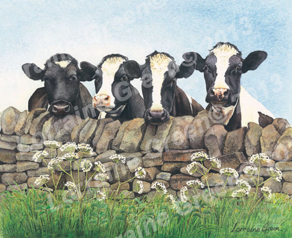 print taken from a watercolour painting of 4 friesians looking over a wall