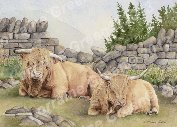print taken from a painting of 2 highland cows