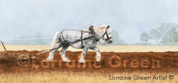 DL Greetings card featuring a grey heavy horse