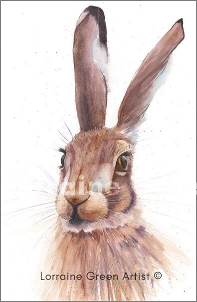 A6 Greetings Card featuring a watercolour image of a Hare