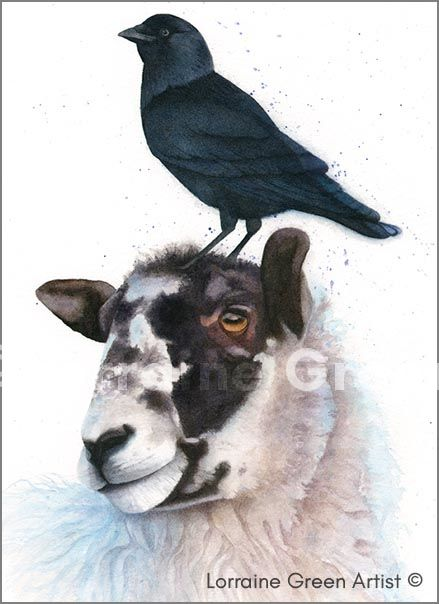 A6 greeting card featuring a sheep and a jackdaw