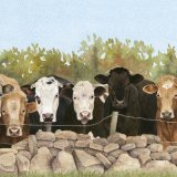 Cows at the Fence Greetings Card
