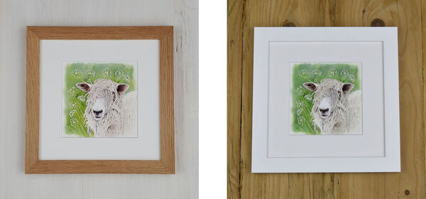Cow Parsley Sheep is available in either an Oak Frame or a White Frame