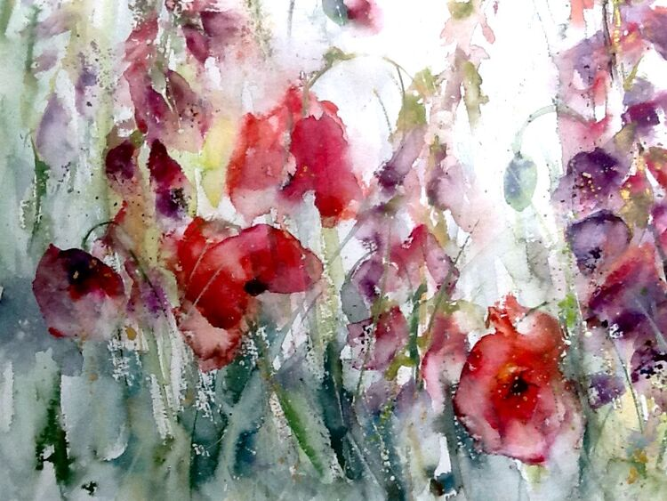 Extra image - Poppies and foxgloves