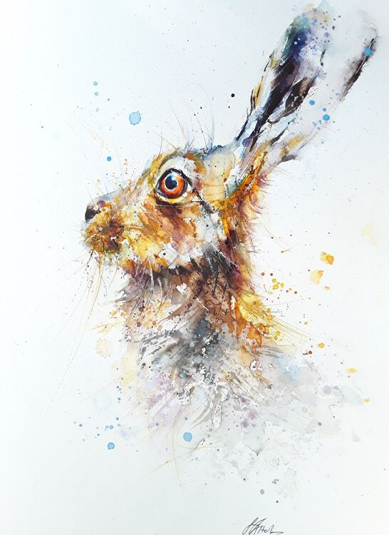 Hare SOLD