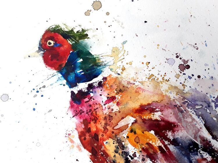 Funky pheasant