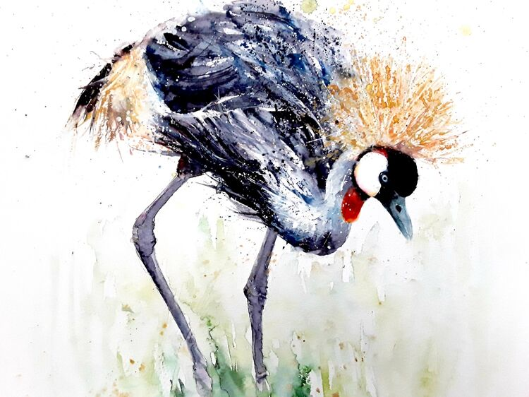 Crested crane  SOLD