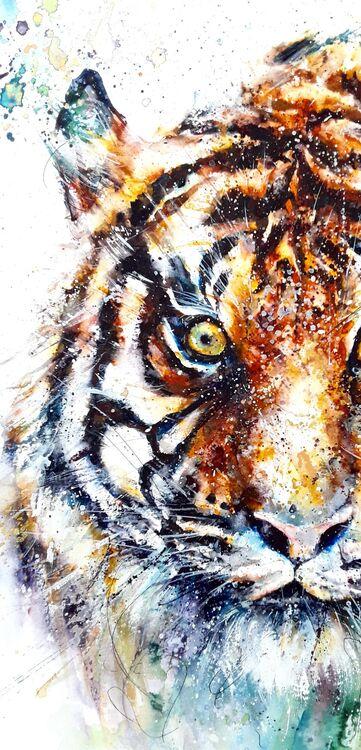 Sumatran tiger - detail image