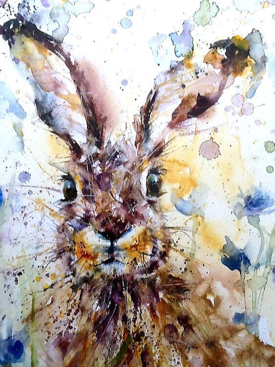 Hare and cornflowers