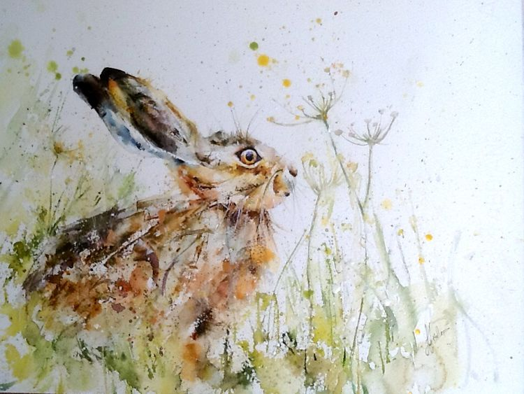 Hare painting meadow