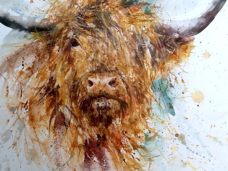 Highland cow watercolour original painting