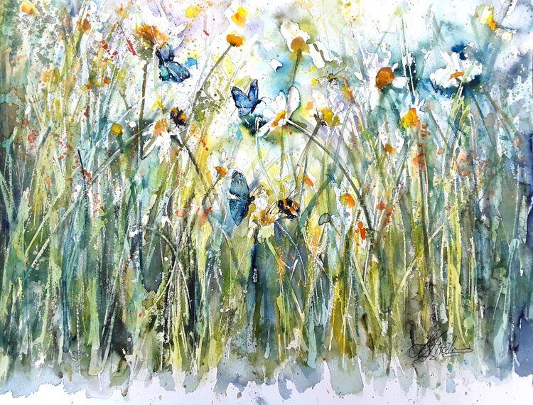 Lisa's daisies