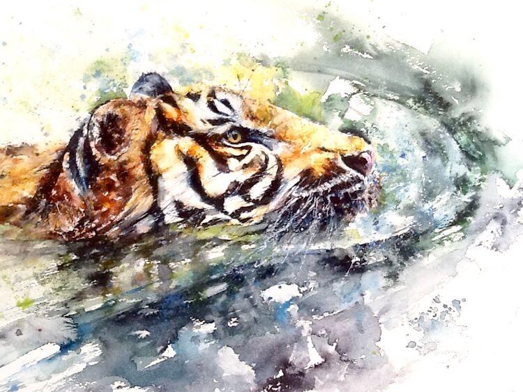 Sumatran tiger Lisa Holmes