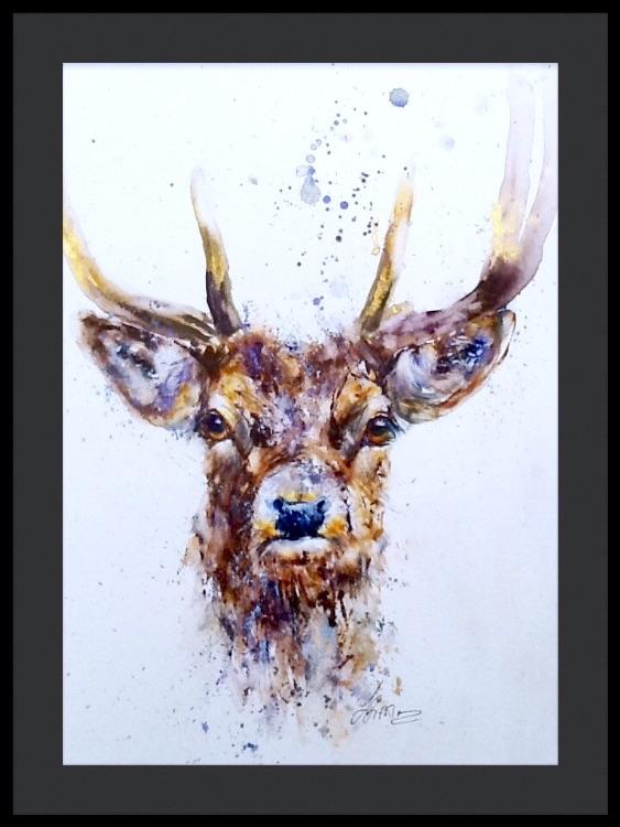 """"""" Hello deer """""""
