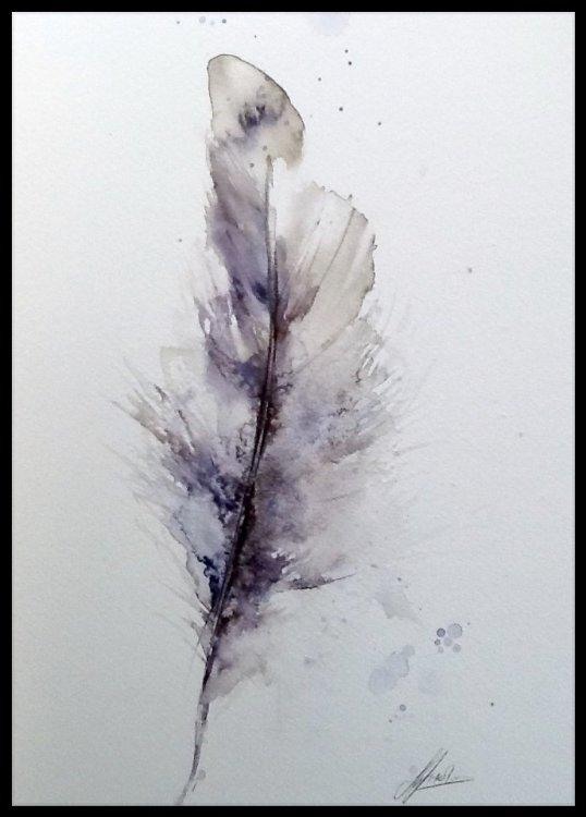 Simple wonders - natural elements