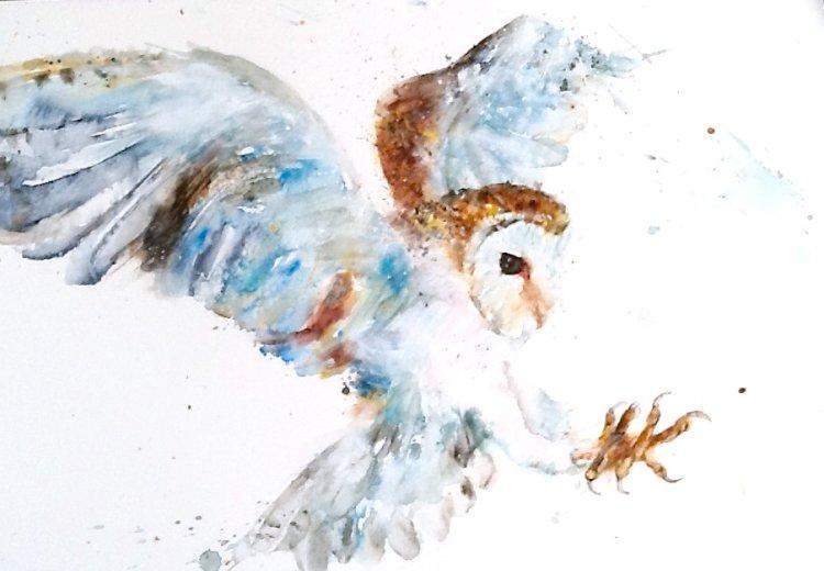 """"""" Luna """" owl"""