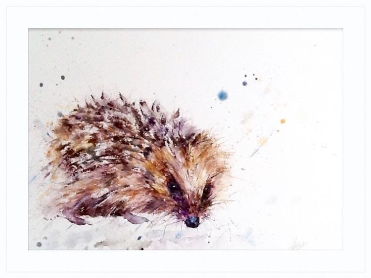 A hedgie hedgehog