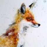 Extra image - sitting fox