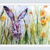 Hare in spring