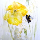 Bee poppy painting