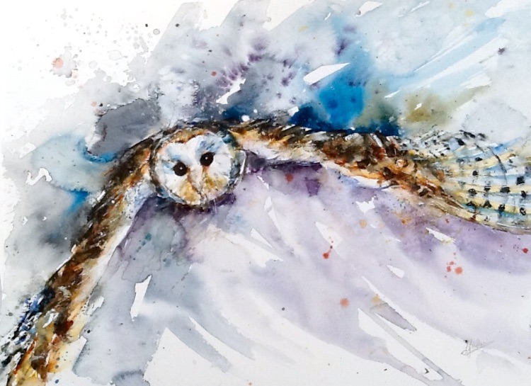 Barn owl in flight SOLD