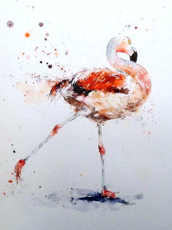 """ Aaaaand stretch "" Chilean flamingo £225"