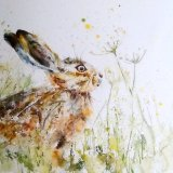 Young hare with cow parsley