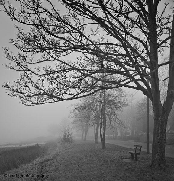 Misty in Mistley 2