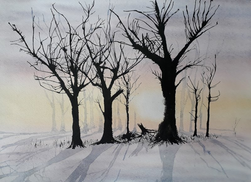 Winter Trees