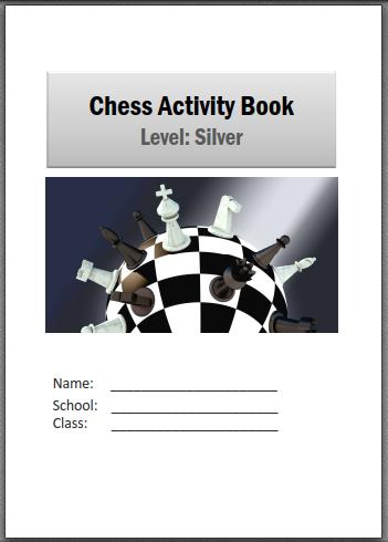 Silver activity book