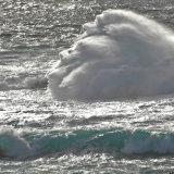 White Horses Shetland