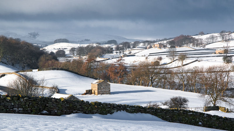 Dales in the Snow
