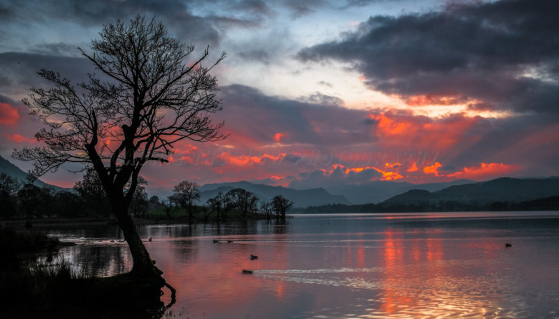 Sunset Eusemere