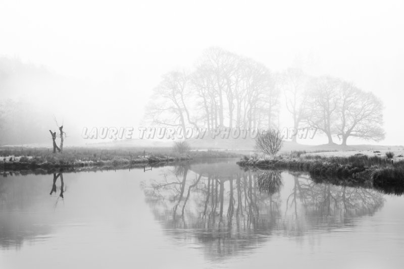 Foggy River Brathay trees 2.