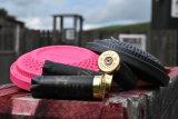 Hull cartridges Lazy dog shooting