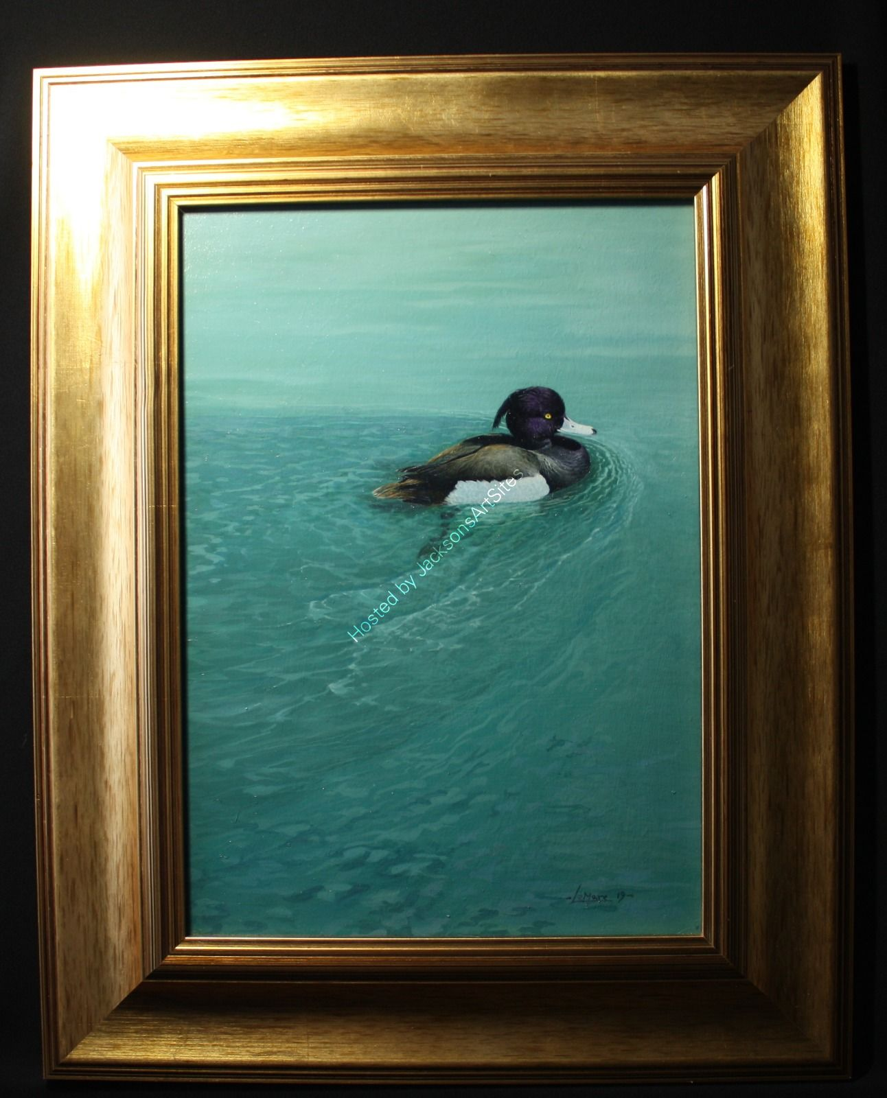 The shape of water - Tufted Duck
