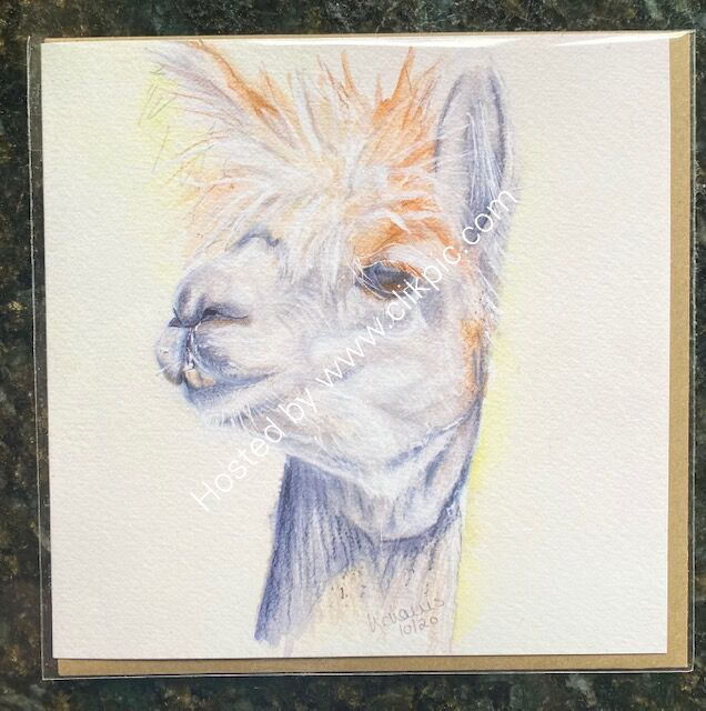 Alpaca My Thoughts card