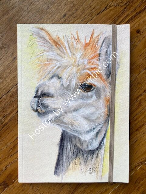 """A5 Notebook """"Alpaca My Thoughts"""""""