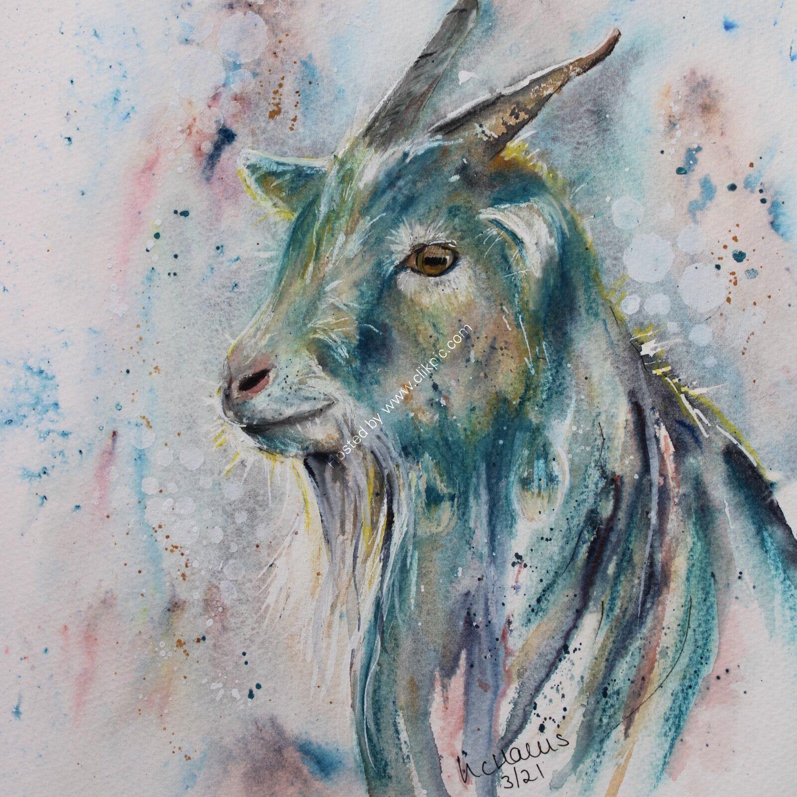Dreamy Goat