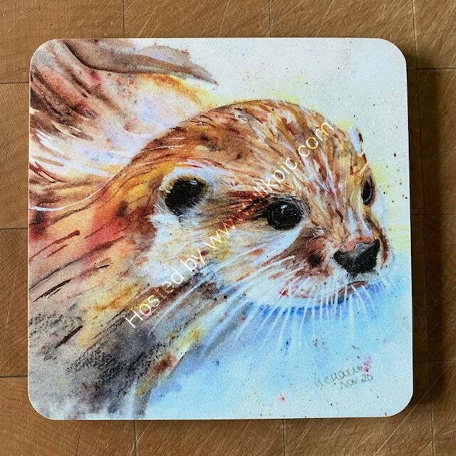 Single Otterly Amazing coaster £4