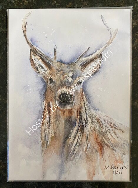 Natural Stag A3 Print