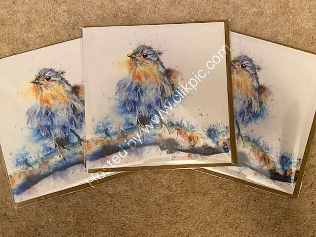 Pack of 3 Robin cards for £6.50