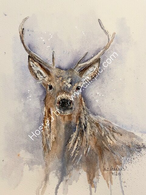 Natural Stag card