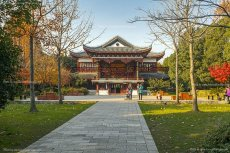 12 Guhuayuan Park, Nunchou I, Nr Shanghai, China