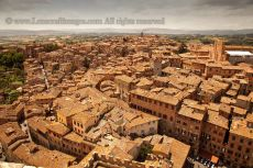 View over Siena from Torre del Mangia