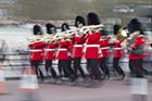 Trombone Guards