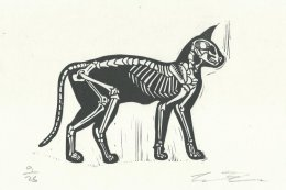 Skelly Cat