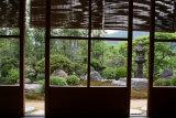 Jikko in garden, kyoto