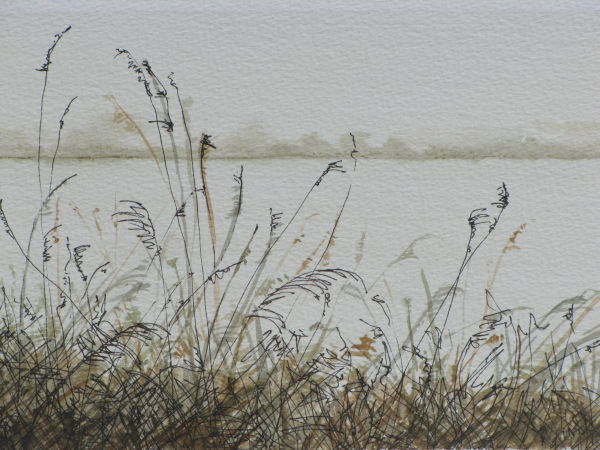 Swavesey lakes - Study