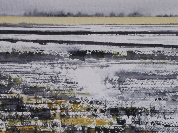 A splash of raw sienna, Ouse Washes, May 2015